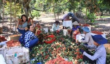 My Tho & Song Mekong Vietnam