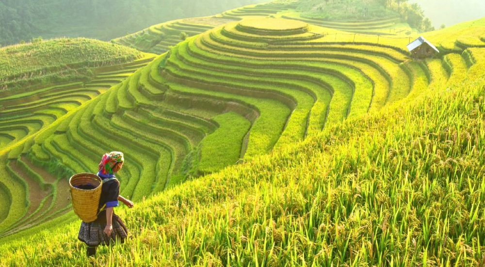 CNN-RECOMMENDS-13-EXPERIENCE-ABOUT-VIETNAM-TOURISM-OBSESSING-VISITORS-15