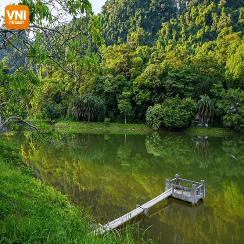 BIODIVERSITY IN CUC PHUONG NATIONAL PARK