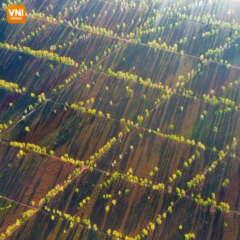 THE LANDSCAPE OF VIETNAM FROM ABOVE-3