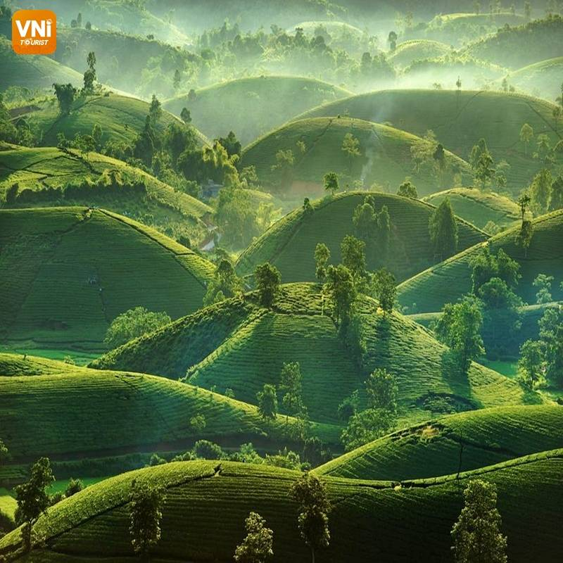 THE LANDSCAPE OF VIETNAM FROM ABOVE-8