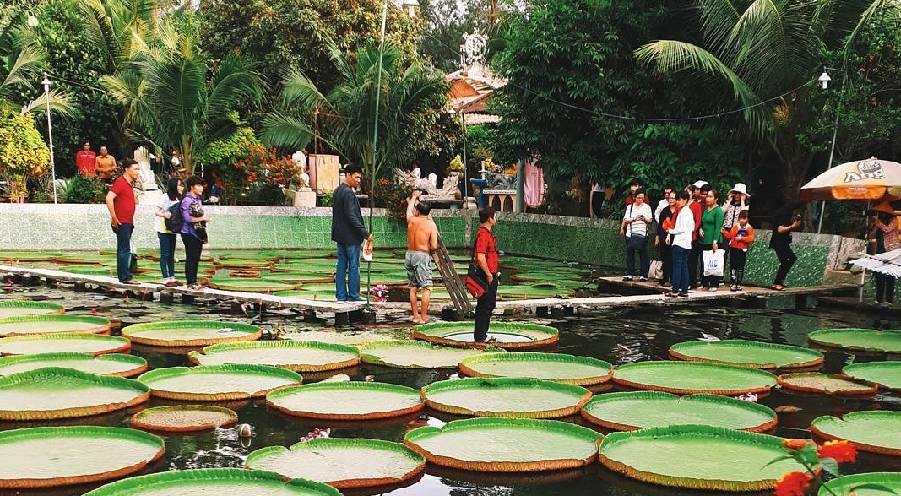 The giant lotus leaves carrying people at Phuoc Kien Pagoda